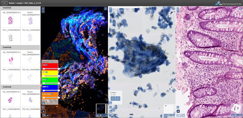 PMA.slidebox combines multiple imaging modalities